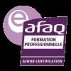 Logo-AFNOR-formation-LS Developpement-sf2